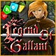 Legend of Gallant Game