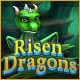 Risen Dragons Game