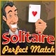 Solitaire Perfect Match Game