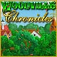 Woodville Chronicles Game