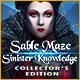 Sable Maze: Sinister Knowledge Collector's Edition Game