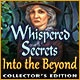 Whispered Secrets: Into the Beyond Collector's Edition Game